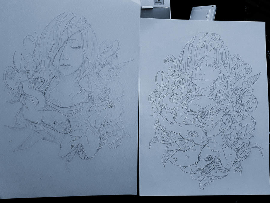 Re-draw by xXYukiNoUsagiXx