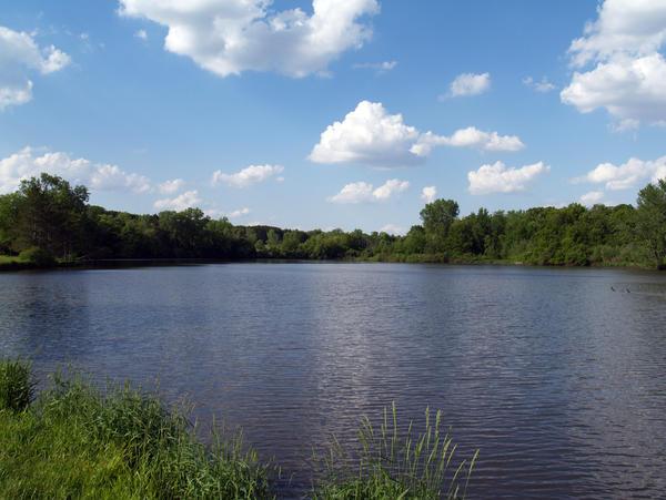 Lake by SolStock