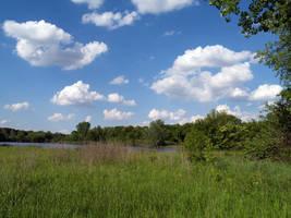 lake field sky by SolStock