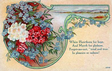 Hawthorne vintage greeting