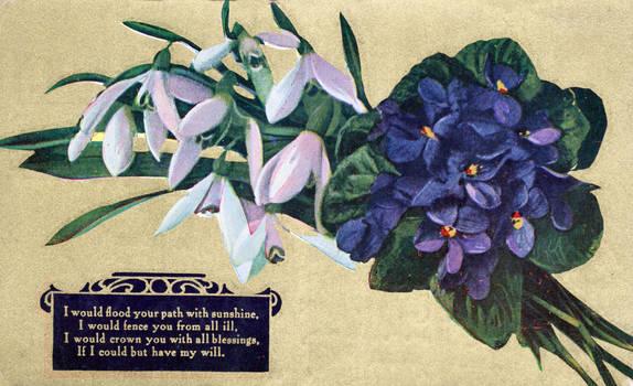 Violet Vintage Greeting