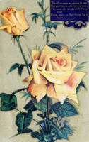 Vintage Yellow Roses by SolStock
