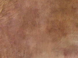 Sepia Canvas by SolStock