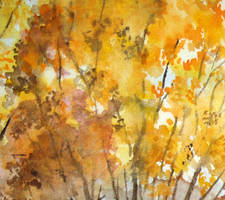 Yellow Trees by SolStock