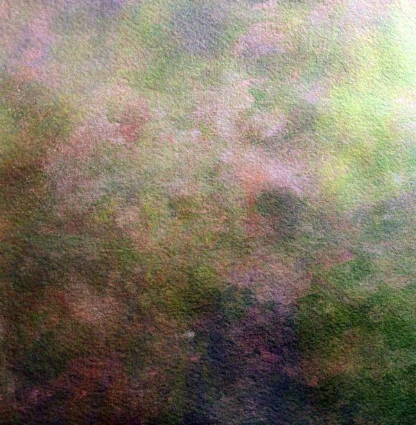 Monet by SolStock