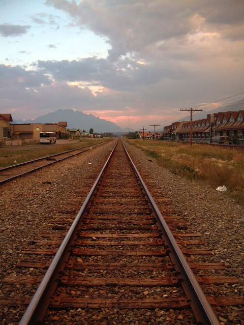 Train Tracks by SolStock