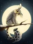 Snowy Owleopard