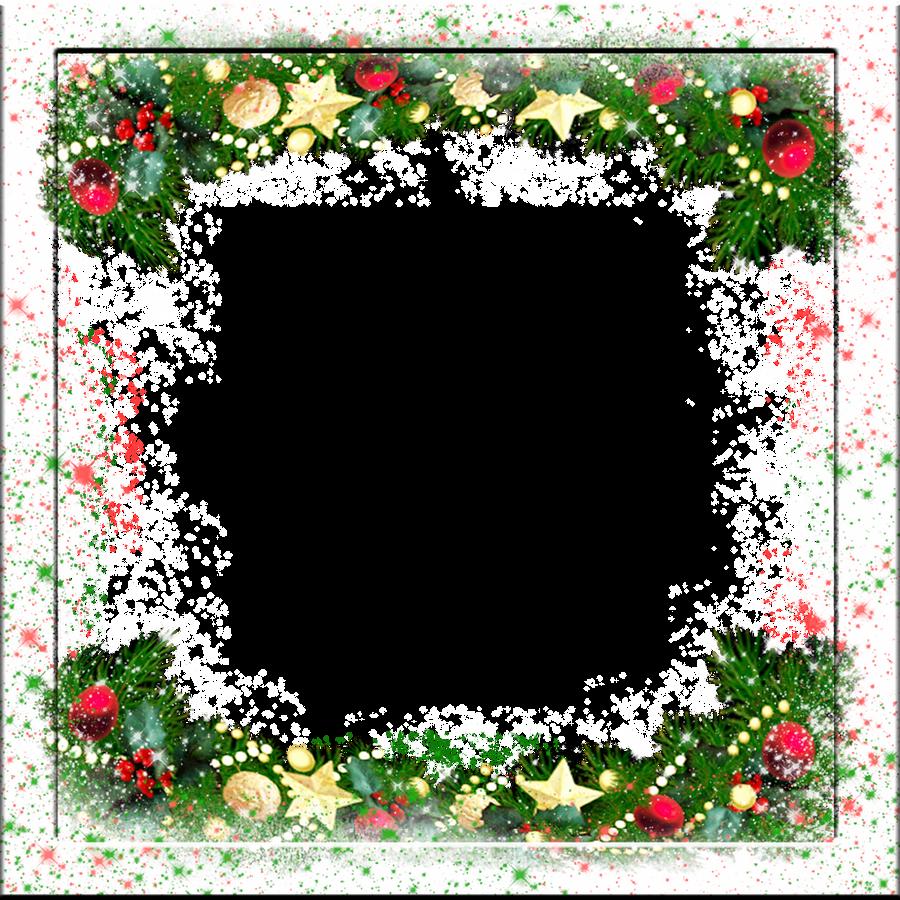 frozen frame 7 by spidergypsy frozen frame 7 by spidergypsy