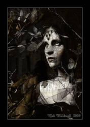 Dark Widow by Rickbw1