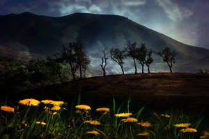 Pre-made Landscape stock 3 by Rickbw1