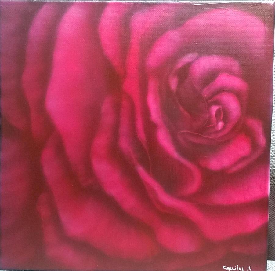 LA vie en Rose by zotilraxx