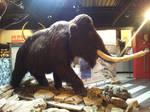 Mammoth II