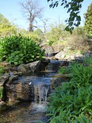 Botanical gardens waterfall
