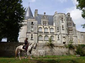 Cheval de Chateau de Crazannes III
