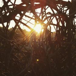 Reynoldstown Sunrise