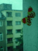butterfly + + + by gewitter-im-anzug