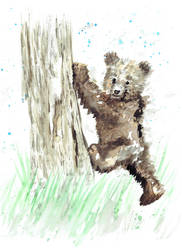Bear Cub by shahuskies