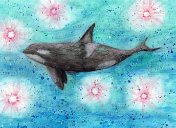 Orca by shahuskies