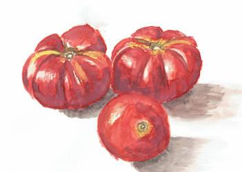 Tomatoes Sitting by shahuskies
