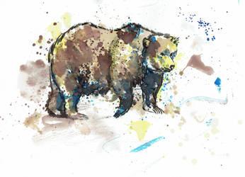 Experimental Bear by shahuskies