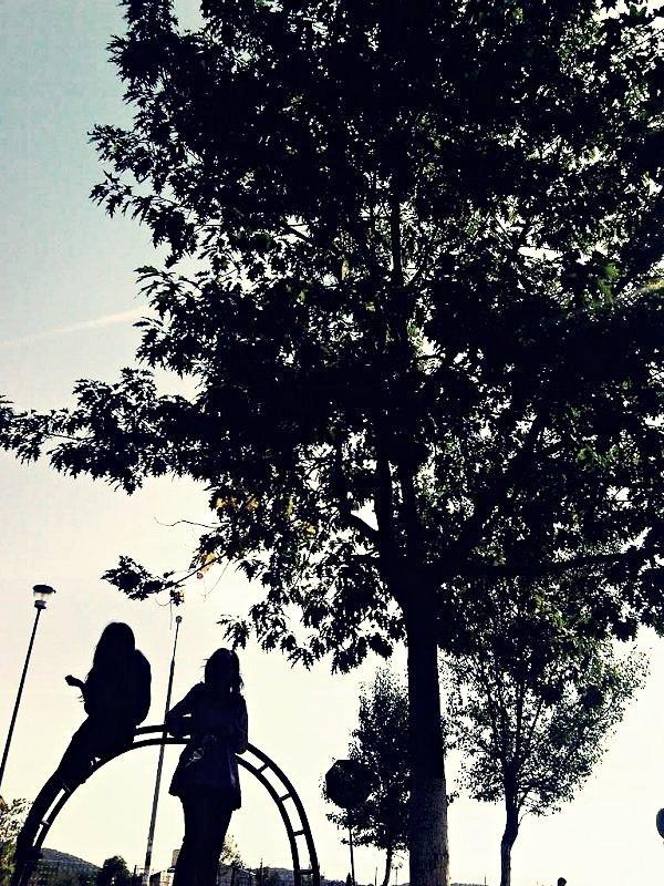 shadows by juliafreeze