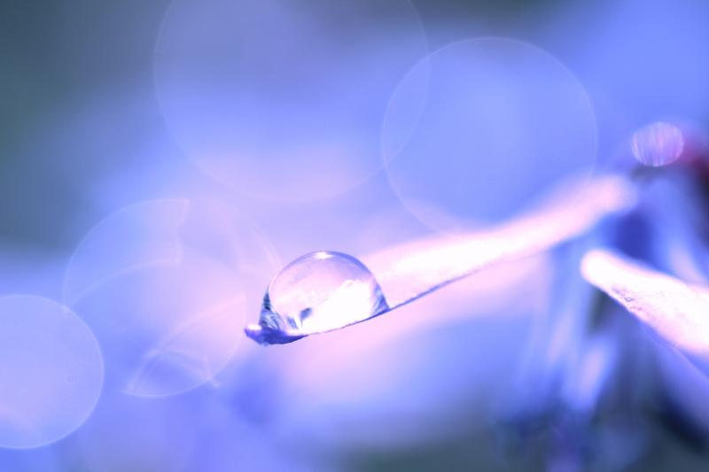 Blue Elegance by Einsilbig