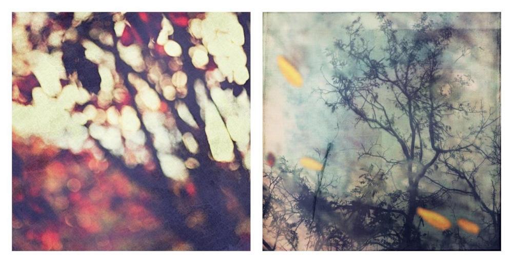Just another autumn portrait (Part 1) by Einsilbig