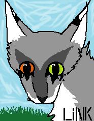 Link by Freyathewarriorcat