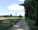 Scenery 8 - August in Zoledowo