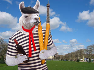 French the Llama