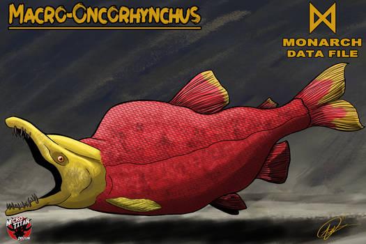 M.D.F. MACRO-ONCORHYNCHUS