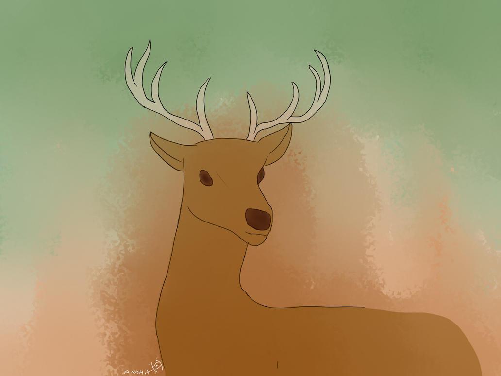 Deer by anahit447