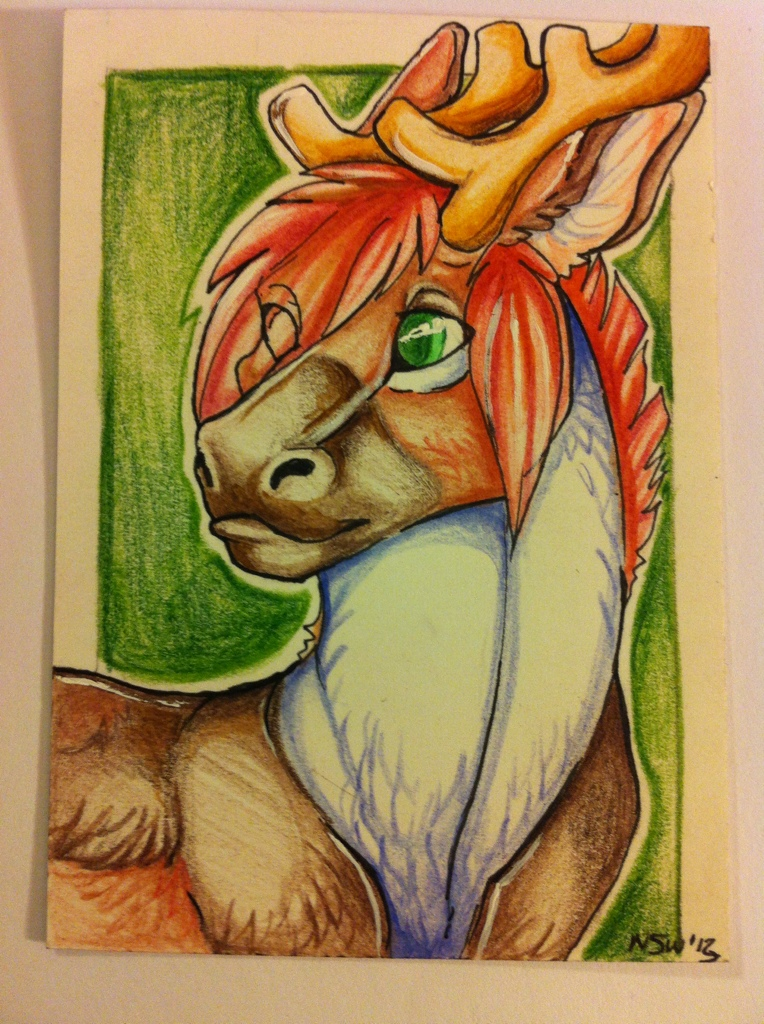 Caribou aceo by nightspiritwing