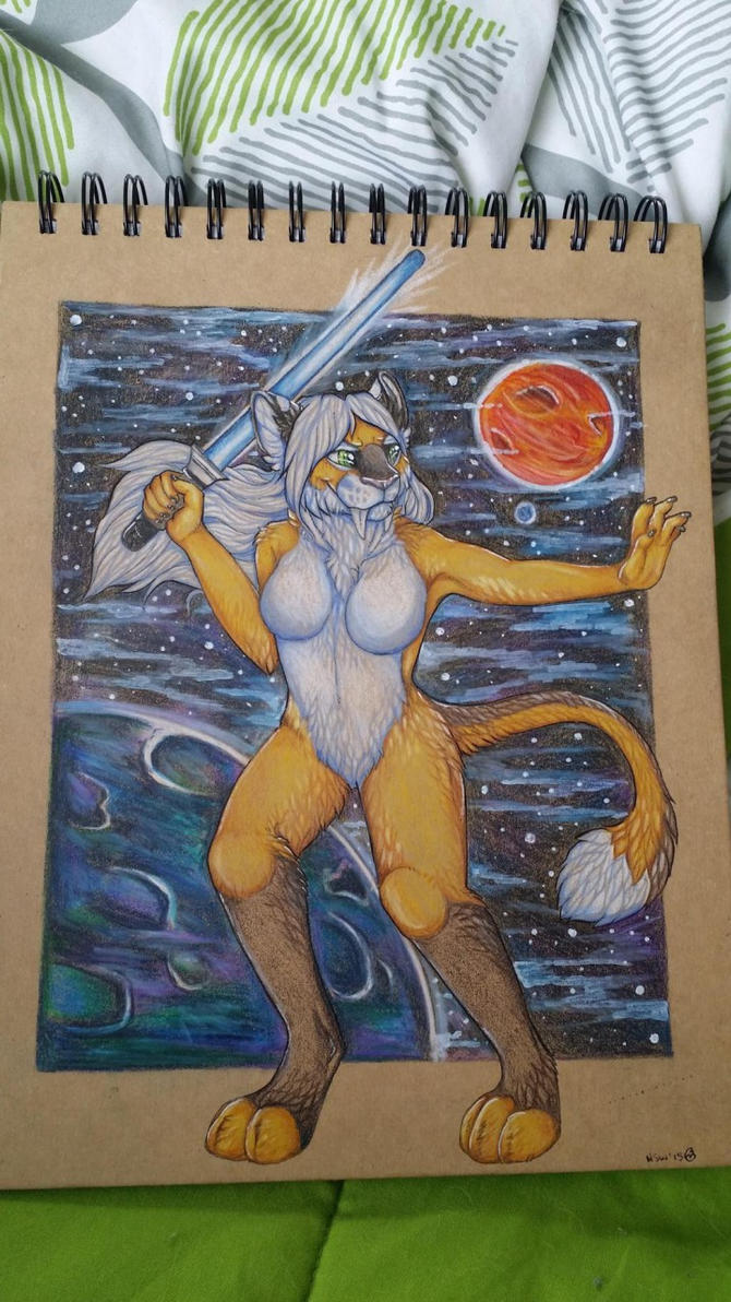 Side one of sketchbook covers commission by nightspiritwing