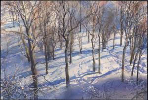 20190219 Winter by art-bat