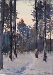 20210314 Winter Evening