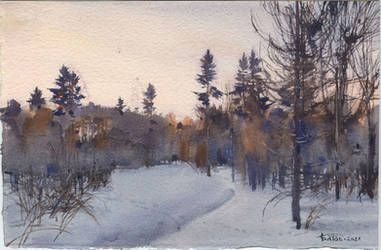 20210317 Winter Forest