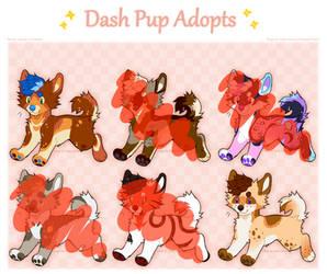 Pupper Adopts OTA 2/6