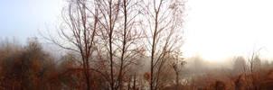 Dec_3_2012