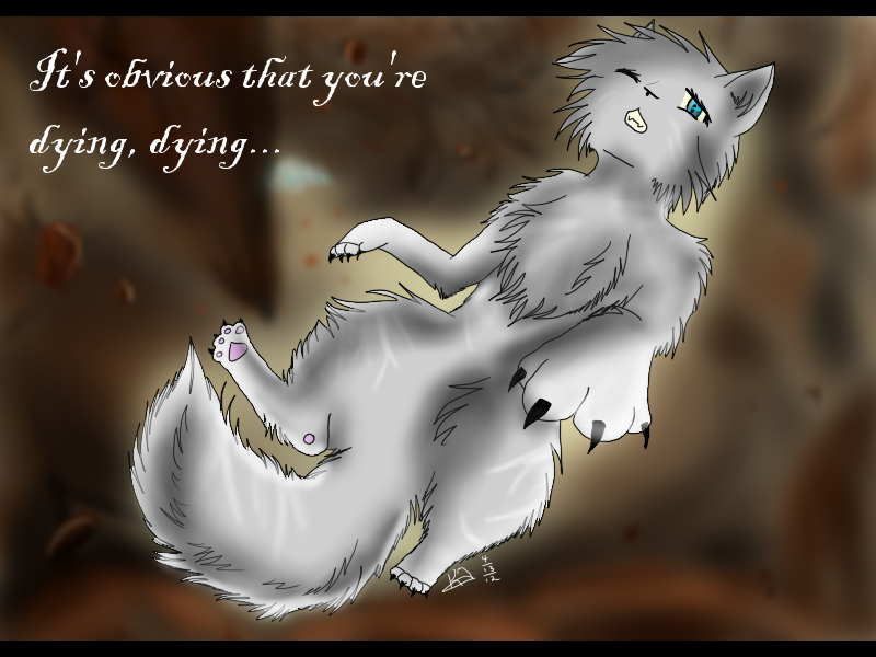 Falling Feather S Death Warrior Cats