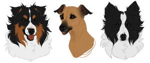 Dogs by Mr-SKID