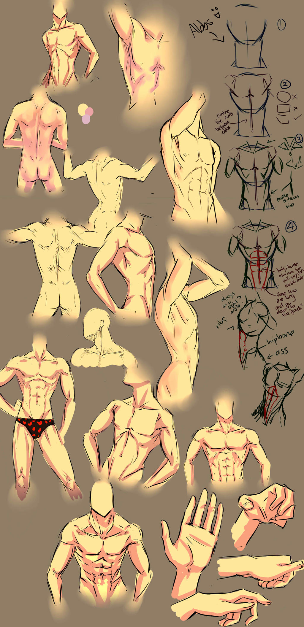 anime male anatomy - HD1024×2113