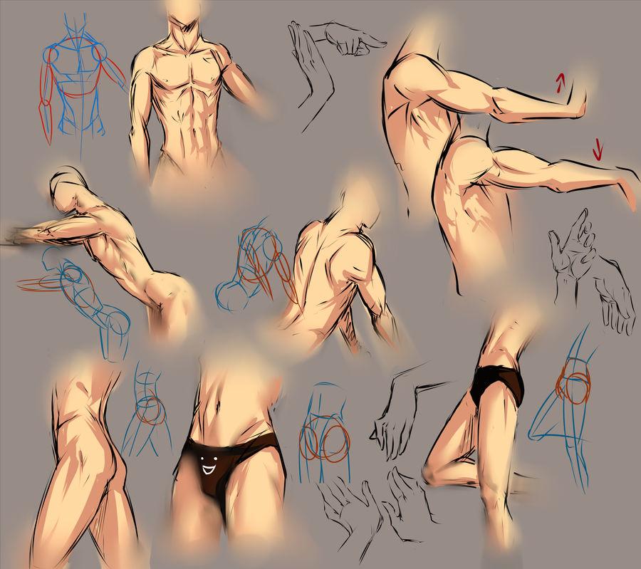 Anatomy practice sheet