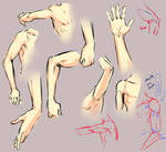 Arm elbow study
