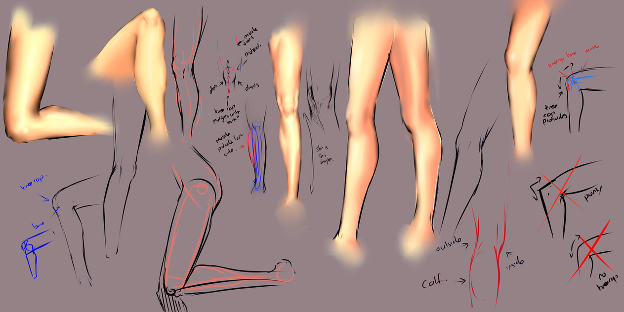 Drawing legs by moni158 on DeviantArt