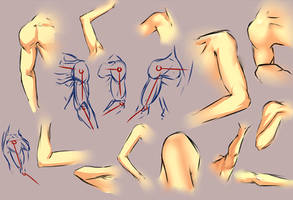 Arm shoulder study 2 by moni158