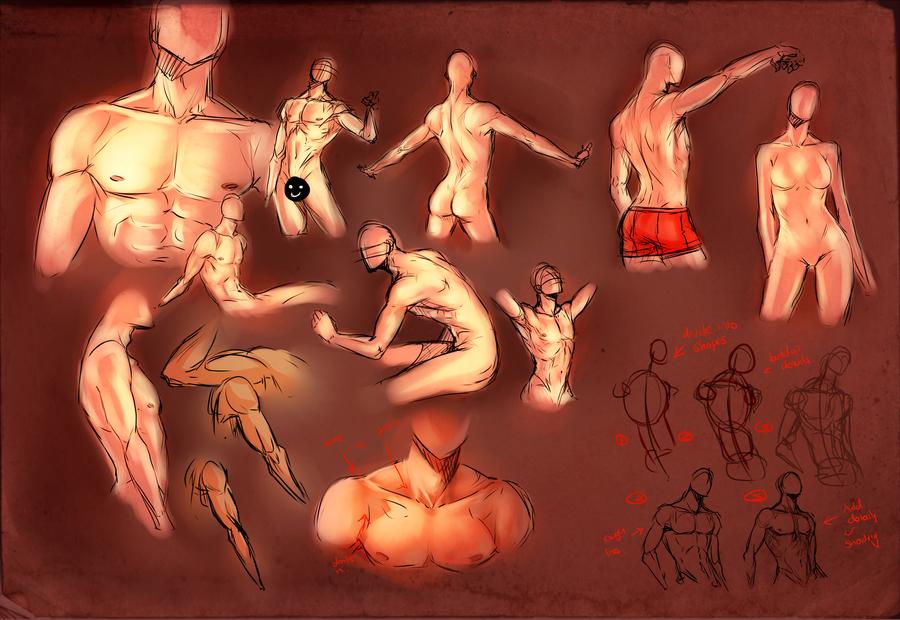 Anatomy Practice by moni158