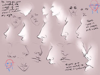 Different nose types