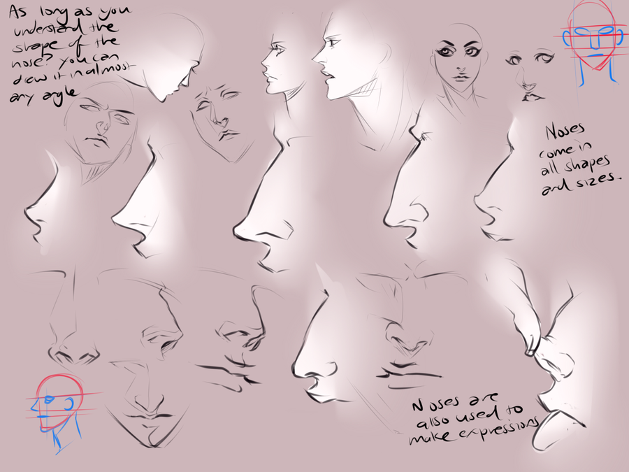 different nose types by moni158 on deviantart