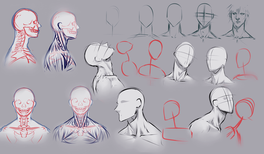 Neckline Drawing : Drawing necks by moni on deviantart